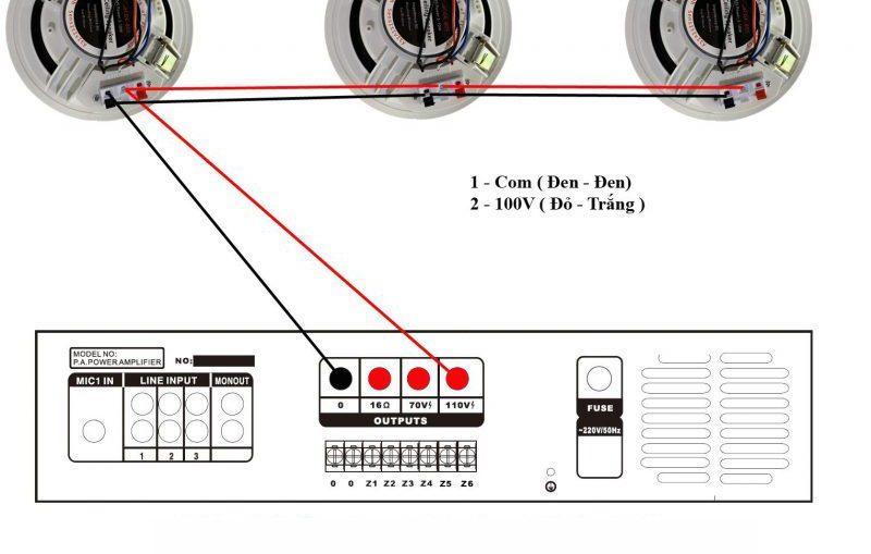 Kết nối amply với loa âm trần